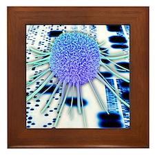 Cancer research Framed Tile
