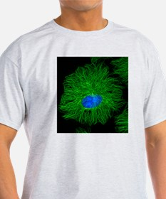 Cell microtubules, light micrograph T-Shirt