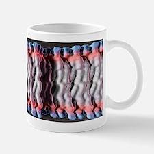 Cell plasma membrane Mug