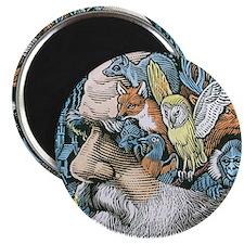 Charles Darwin, British naturalist Magnet