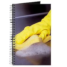Cleaning sponge Journal