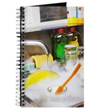 Cleaning the dishes Journal