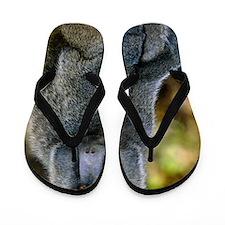 Olive baboon Flip Flops