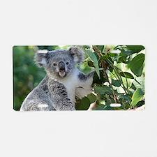Cute koala  Aluminum License Plate