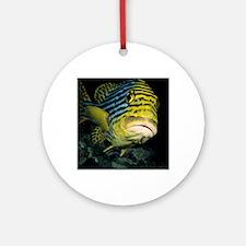 Oriental sweetlips fish Round Ornament