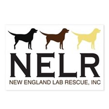 New England Lab Rescue Postcards (Package of 8)