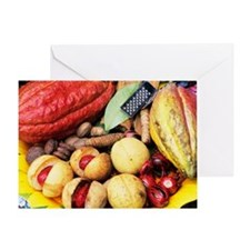 Cocoa pods and nutmeg Greeting Card