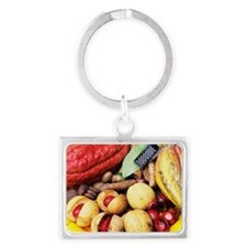 Cocoa pods and nutmeg Landscape Keychain