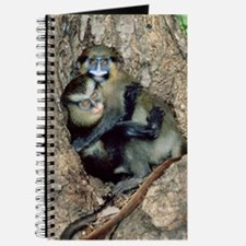 Orphaned guenons Journal