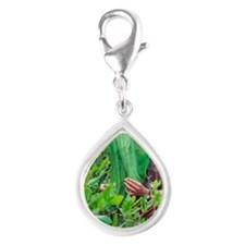 Collecting insects Silver Teardrop Charm