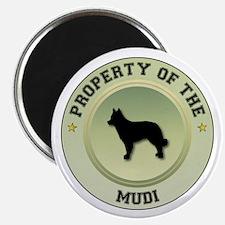 Mudi Property Magnet