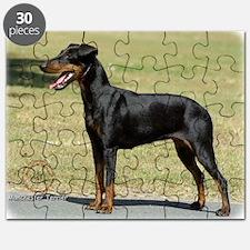 Manchester Terrier 9R032D-094 Puzzle