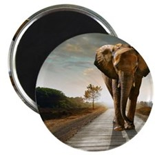 Big Elephant Magnet