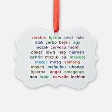 Say it...Brain! Ornament