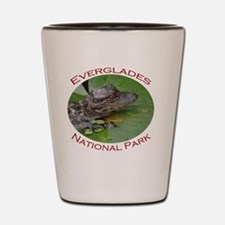 Everglades National Park...Baby Alligat Shot Glass