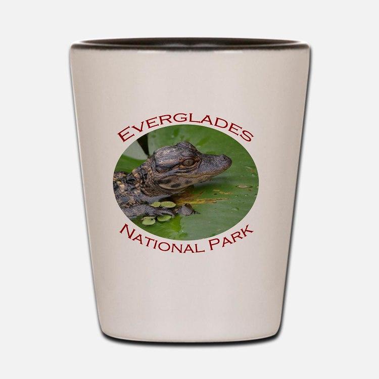 Everglades National Park...Baby Alligat Shot Glass