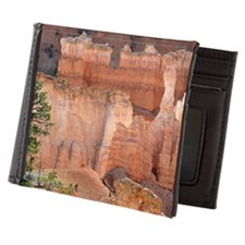 Bryce Canyon Aglow Mens Wallet