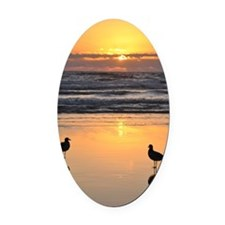 Early Bird Gets the Worm Oval Car Magnet