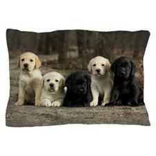 Labrador puppies sitting in the alley. Pillow Case
