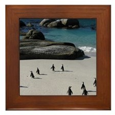 white sandy beaches and calm, safe, wa Framed Tile