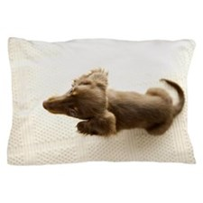 Wiener Dog brown Pillow Case
