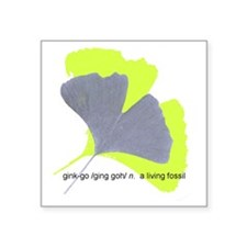 "ginkgo, a living fossil Square Sticker 3"" x 3"""