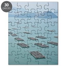 Oyster farm Puzzle