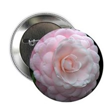 """Close-up of camellia flower. 2.25"""" Button"""