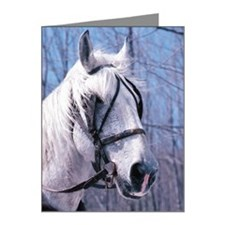 Horse wearing bridle and bit Note Cards (Pk of 20)