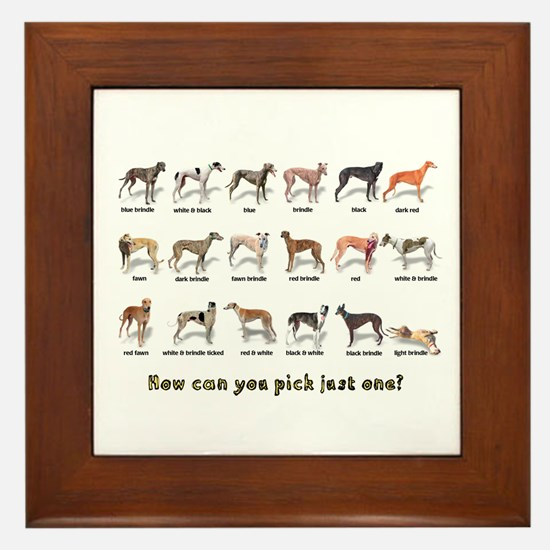 Greyhound Colors Framed Tile