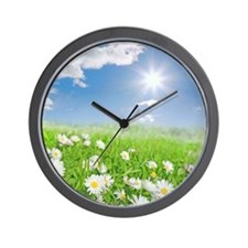 Summer daisies in a meadow Wall Clock