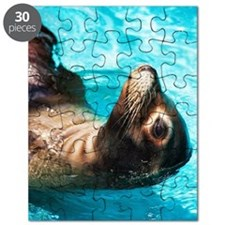 Sea lion in blue water Puzzle