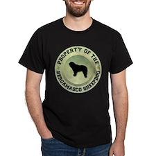 Bergamasco Property T-Shirt