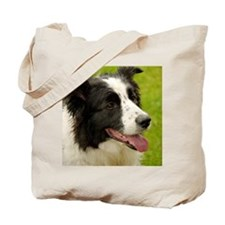 Border collie with tongue out. Tote Bag