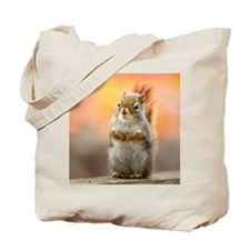 Close up of squirrel sitting on deck rail Tote Bag