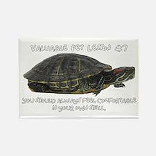 Valuable Pet Lesson #7 Rectangle Magnet (10 pack)