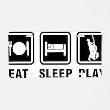 Eat-Sleep-Play-03-a Aluminum License Plate