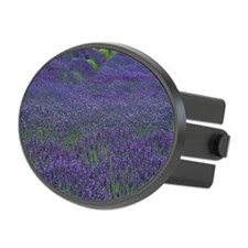 Lavender field, San Juan Island Hitch Cover