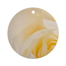 Heart of white rose. Round Ornament