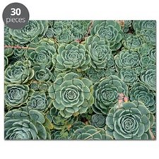 This photo has a repeating pattern of plant Puzzle