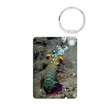 Peacock mantis shrimp Keychains