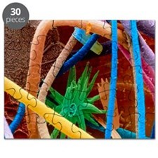 Coloured SEM of household dust (allergens) Puzzle