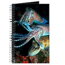 Pharaoh cuttlefish Journal