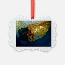 Parachute water landing training Ornament