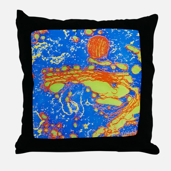 Coloured TEM of a dictyosome in a Gol Throw Pillow