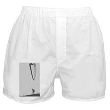 Ground handling Boxer Shorts