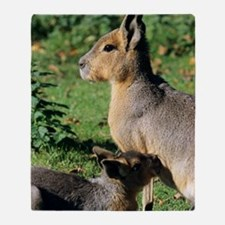 Patagonian cavy and young Throw Blanket