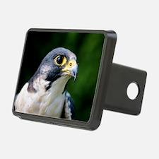 Peregrine falcon Hitch Cover