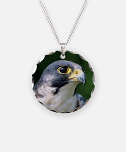 Peregrine falcon Necklace
