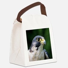 Peregrine falcon Canvas Lunch Bag